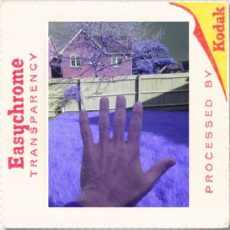 aerochrome infrared camera