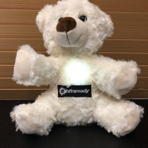 KII EMF GHOST HUNTING BEAR