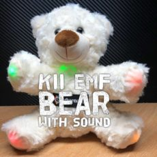 kii emf boo bear ghost hunting emf k2