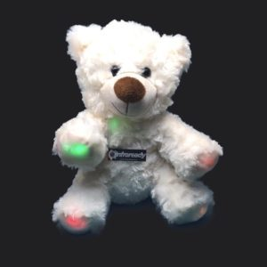 Ghost Hunting Bear EMF