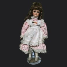 Haunted Doll EMF REM