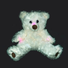Paranormal Teddy Bear REM