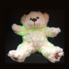 Ghost Hunting Teddy