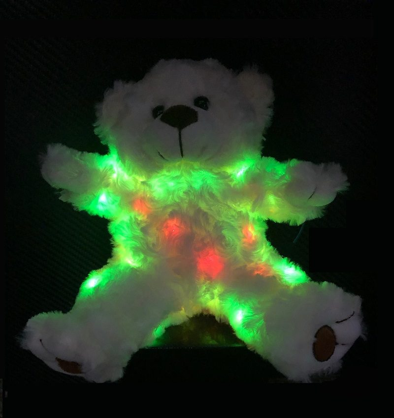 Ghost Hunting Teddy Bear