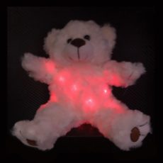 Paranormal Teddy